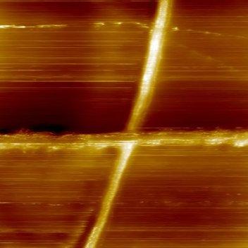 СТМ изображение двух пересекающихся нанотрубок. Размер скана 168*1168 нм